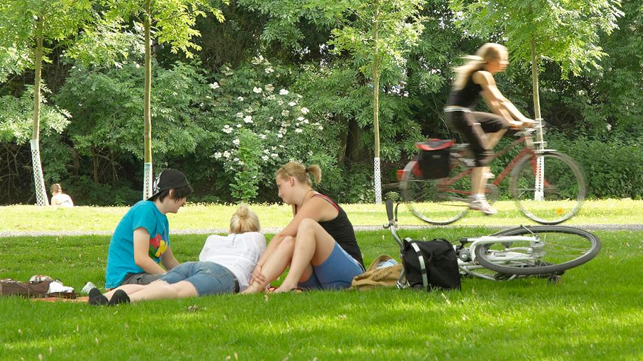 Picknick unter Bäumen: © Stefan Cop