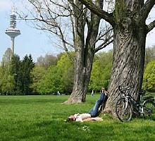 Grüneburgpark: © Stefan Cop