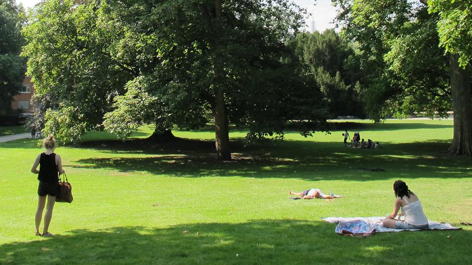 Rothschildpark und Günthersburgpark: © Grünflächenamt