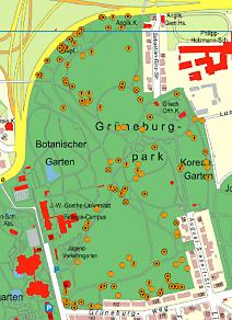 Kartierung Höhlenbäume: © Institut für Tierökologie und Naturbildung, Geobasisdaten: © Stadtvermessungsamt Frankfurt am Main