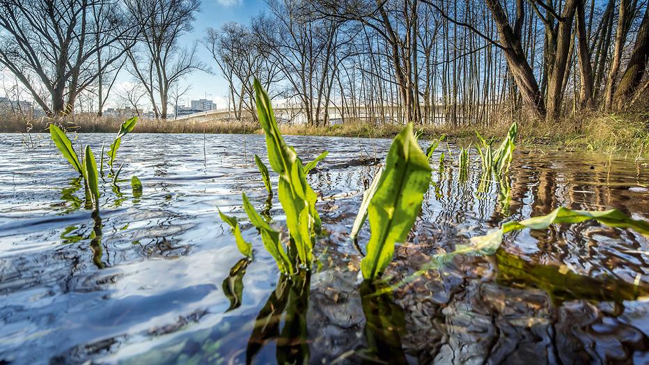 © Umweltamt, Foto: Eckhard Krumpholz
